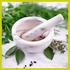 Shifa Herbs